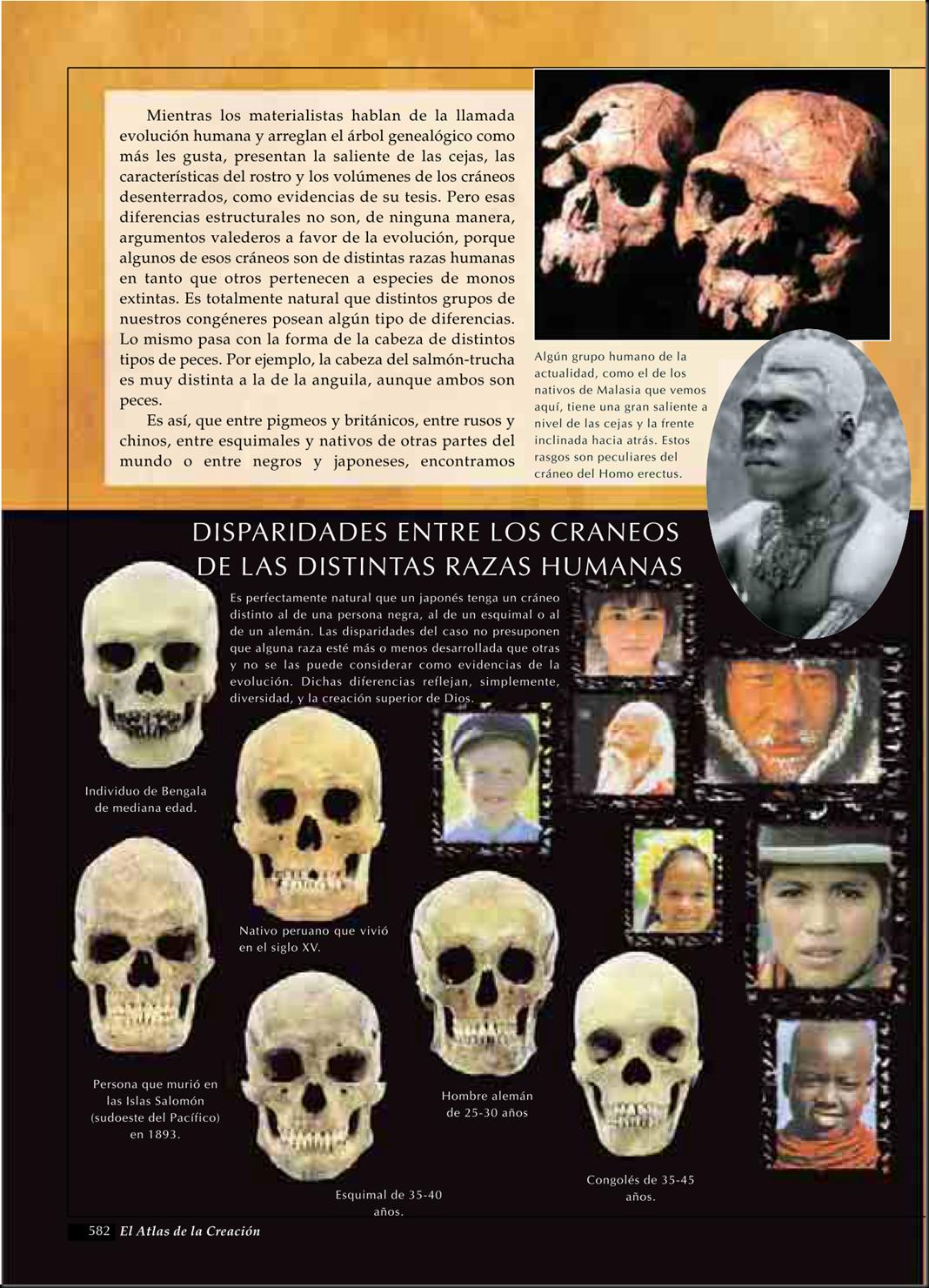 """Quieren clonar a un neandertal con un """"borrador"""" de ADN Image_thumb67"""